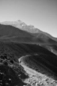 قضبان اصطناعية دوامة اللون