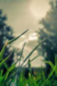 بلدان جزر المحيط الهادئ شاطئ العراة