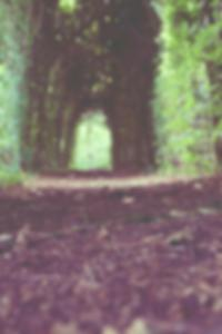 صور ليزا نيلد عارية