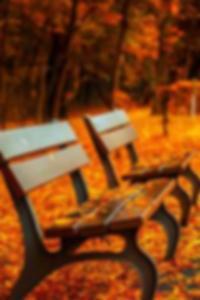 عرض صور عارية اشلي غرين