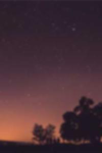 نموذج خرطوم بانتي في سن المراهقة